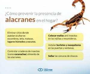 Alacranes_FB